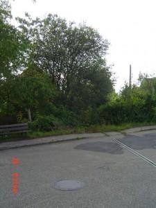 """""""Einfahrt"""" in den Gerabronner Bahnhof von Blaufelden 2009"""